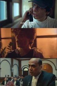 377 अब Normal (2019)